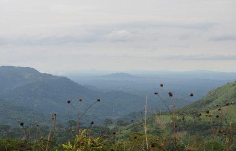 Die Landschaft am Plateau ist wunderschön.