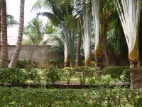 Togohaus Lomé - Garten