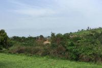 Rundreise durch Togo - Station Illico