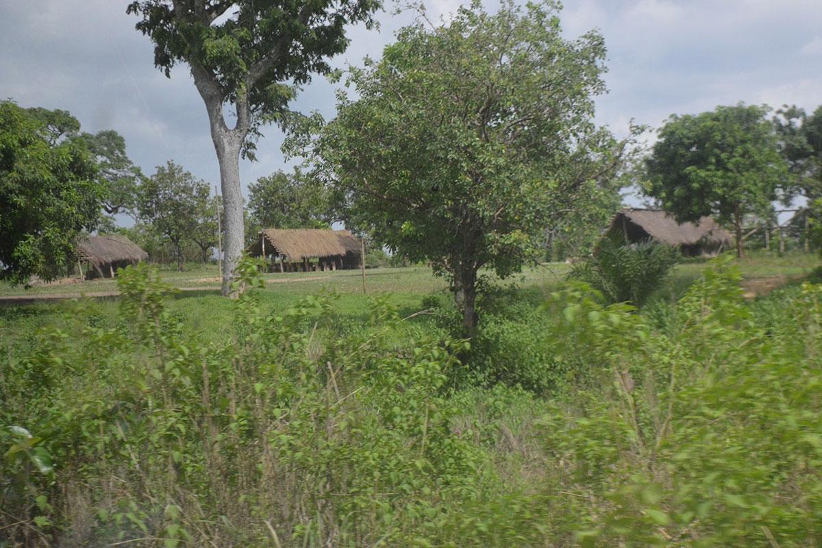 Eine Schule am Wegesrand auf dem Weg nach Fazao