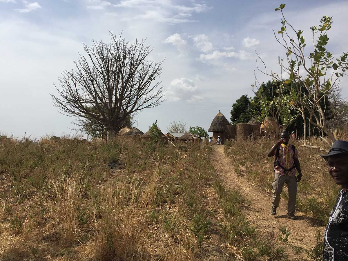 Während der Trockenzeit sind hauptsächlich die Mangobäume grün