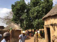 Versammlungen finden immer unterm Dorf-Mangobaum statt