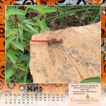 Togo-Kalender 2020, das Maiblatt