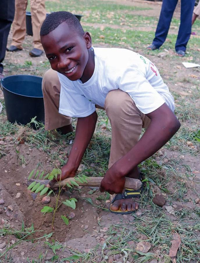 Junge pflanzt einen Baum