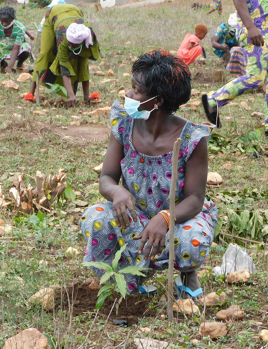 Eine Frau pflanzt in Illico einen Baum
